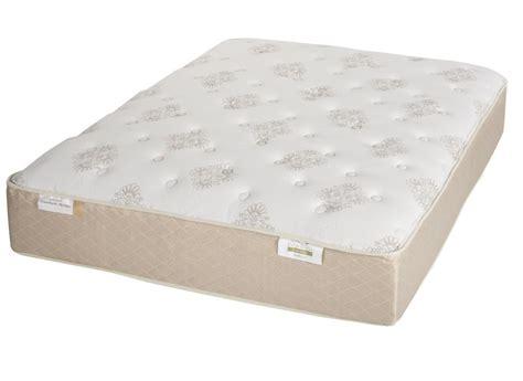 air mattress consumer reports