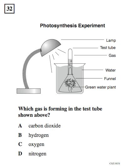 Daily Kos Test Test Test California 5th Grade Science