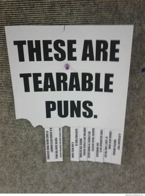 Meme Pun - these are tearable puns weknowmemes