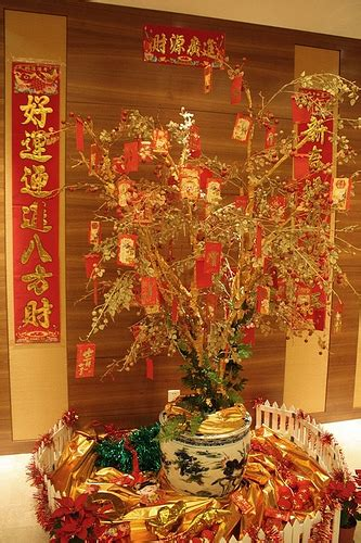 money plant for new year 10 000 blessings feng shui new year
