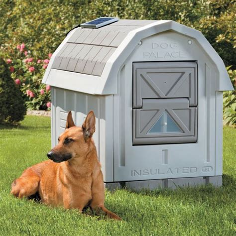 dog house plans insulated 20 beautiful and funny dog house plans for your inspiration