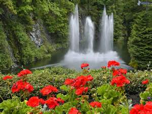 beautiful waterfalls with flowers beautiful nature images waterfall with flowers