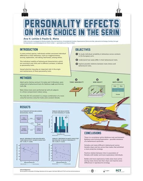good templates for posters 16 best academic poster design images on pinterest