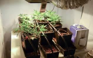 odor control tips   indoor cannabis grow room