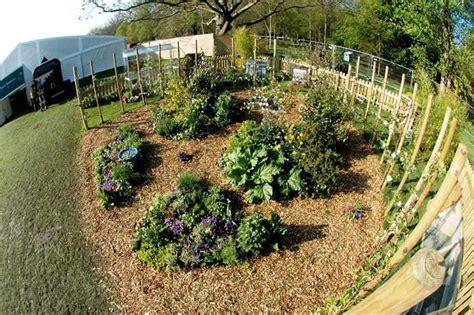 backyard permaculture design permaculture design garden designs pinterest