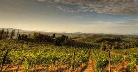 best restaurants tuscany the top 10 restaurants in tuscany