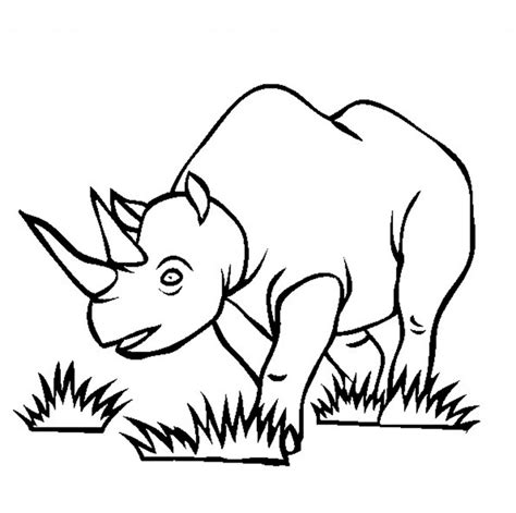coloring pages endangered animals free printable rhinoceros coloring pages for