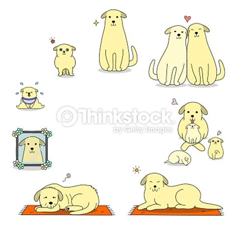 cycle of a puppy dogs cycle vector thinkstock
