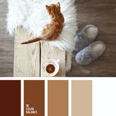 colors that match brown 1000 ideas about brown color schemes on brown