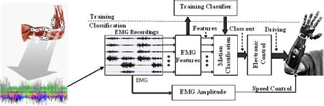 design principles of pattern recognition system in artificial intelligence see beyond you myoelectric control of multifunction