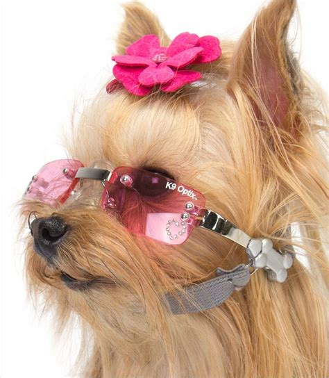 sunglasses for dogs k9 optics sunglasses morkies