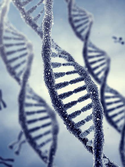 test paternit 224 genoma
