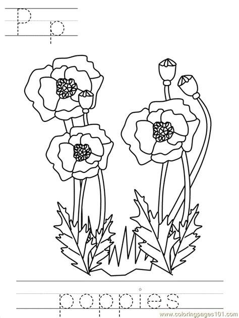 poppy wreath coloring page poppy sheets az coloring pages