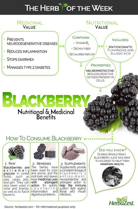 Astringent Fruits List Detox by 29 Best Infographics Images On Health Foods