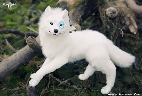 doll wolf white wolf pakshi by flicker dolls on deviantart
