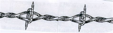 Barbed Wire Barb Wire Drawings