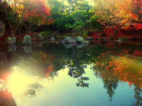 beautiful color autumn beautiful color colorful colors colour image