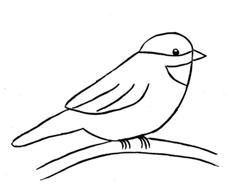 chickadee how to draw a colouring page chickadee bird