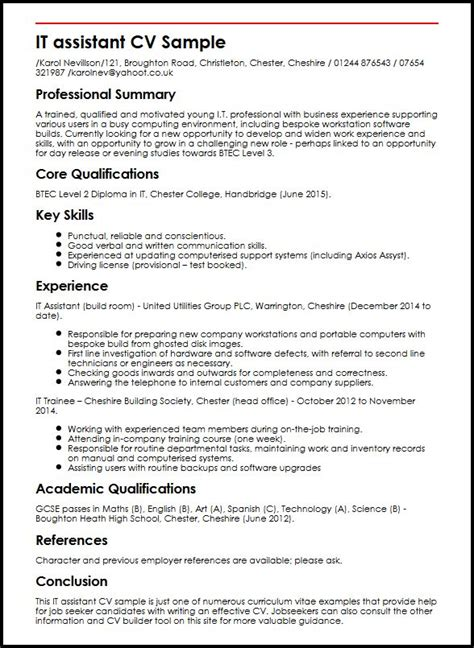 curriculum vitae exles for it assistant cv sle myperfectcv