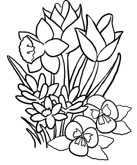 free coloring pages of flowers and butterflies coloring pages of flowers and butterflies gianfreda net