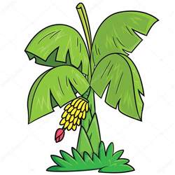 banana tree cartoon stock vector 169 rubynurbaidi 87915220