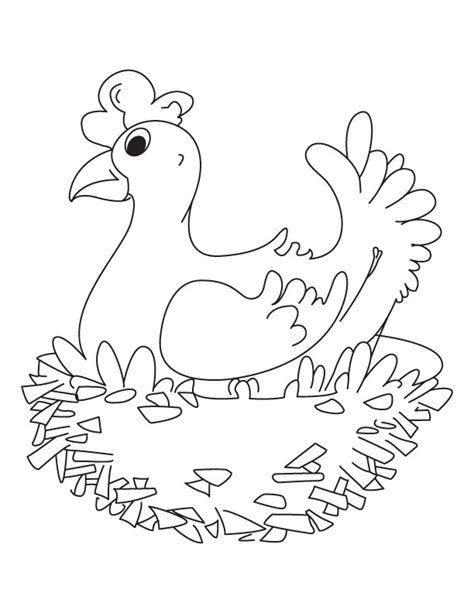 hen coloring coloring coloring pages