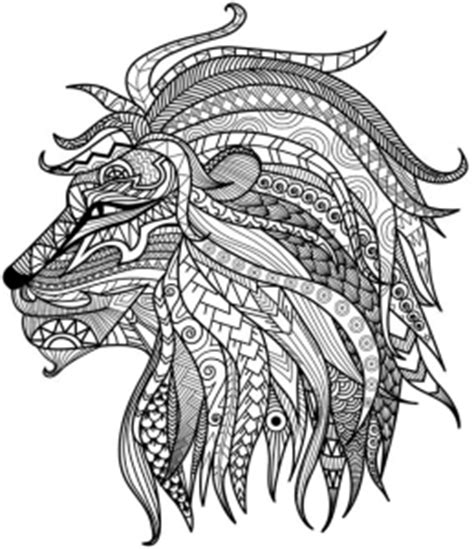 Detailed Lion Coloring Pages | detailed lion advanced coloring page a to z teacher
