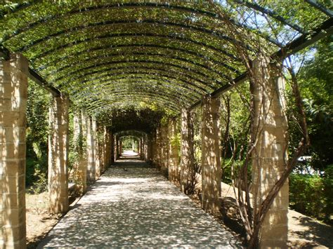 National Garden Athens by Car Hire Athens Greece Reliable Car Hire In Athens
