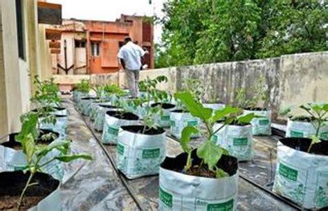 make vegetable garden how to make vegetable garden on terrace 5 ideas for green