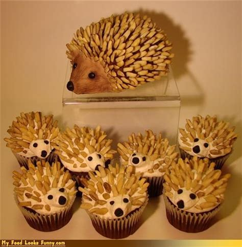 Hedgehog Foods On Hedgehog Cake Hedgehog food photos hedgehog cupcakes superlol