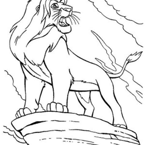 lion roaring coloring pages beautiful nala the lion king coloring page beautiful nala