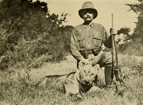 1431702064 on safari a young explorer s קובץ the big game of africa 1910 lioness sotik plains