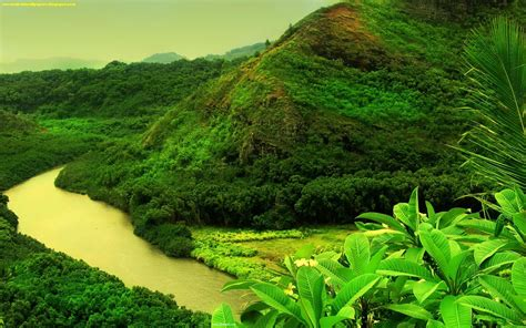 Latest And Amazing Nature Hd Wallpapers 2013 Free For