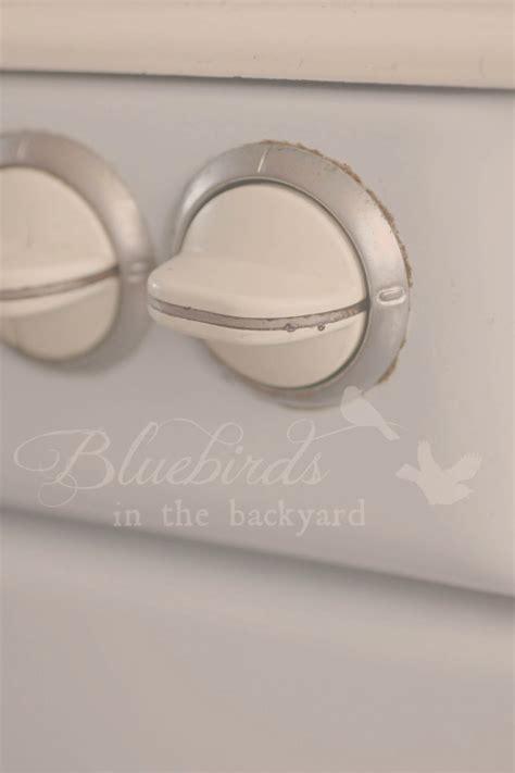 bluebirds   backyard  vintage atag cote dazur
