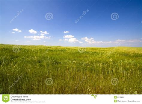 landscape with blue sky royalty free stock photo image