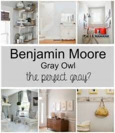 paint colors gray owl by benjamin moore wife in progress