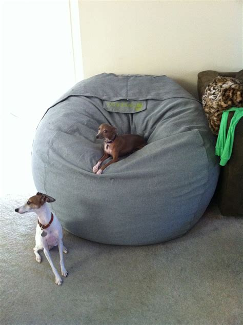 lovesac dog bed dog beds lovesac valencia