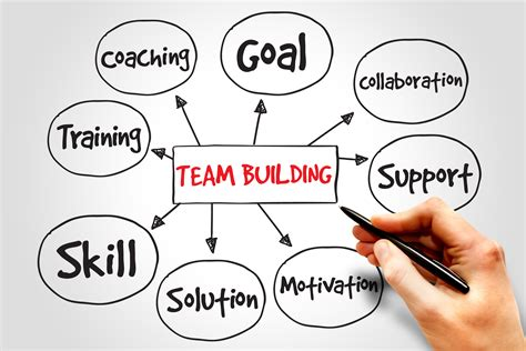 build how to create a phenomenal team for your service company books build your team for improved performance kenya safari