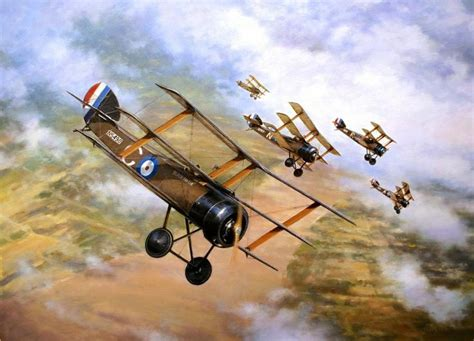 ace hardware navarre 636 best images about world war i aircraft on pinterest