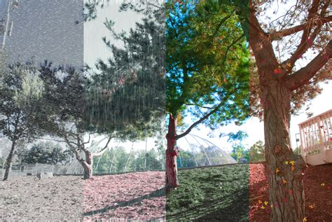 four seasons landscape mrs moncure rop photo imaging i