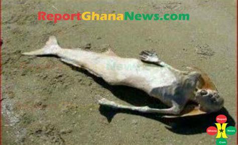 ghana celebrity entertainment news mammy water seen on the beach by fisherman ghana news