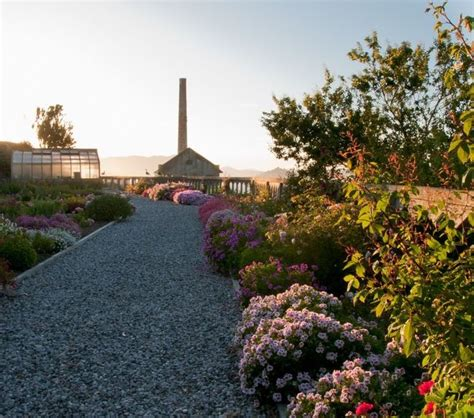 landscape the gardens of alcatraz how does your garden grow pint