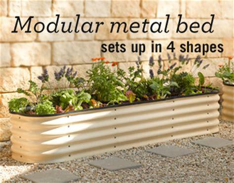 Gardeners Supply Raised Bed Healthy Vegetable Crop Information Building Vegetable