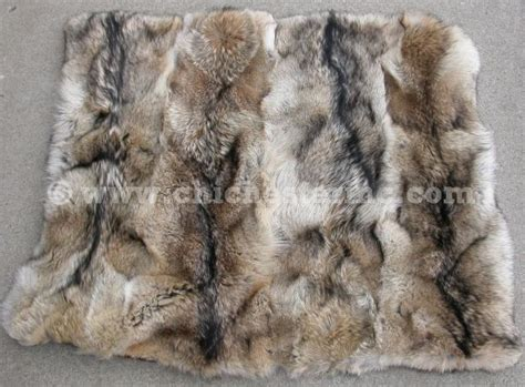 fur bed coyote pelt blanket www pixshark images galleries with a bite