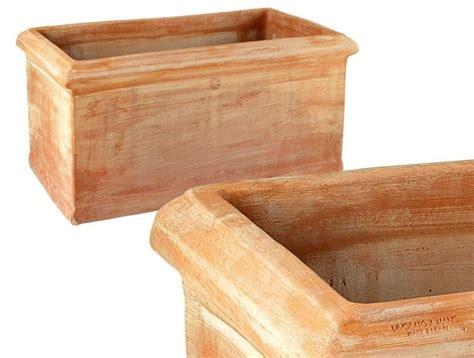 vasi cotto vasi per trachelospermum piante da giardino vasi per