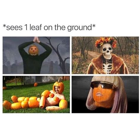 Fall Meme - 15 things explaining you if you re excited for fall gurl com