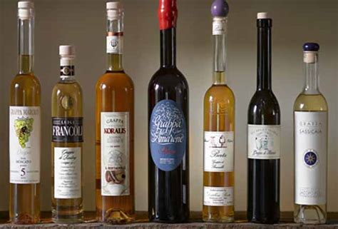 best grappa the 6 essentials of grappa what you need to