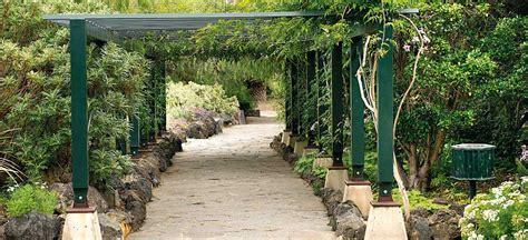 jardin botanico gran canaria jard 237 n bot 225 nico viera y clavijo gran canaria museums