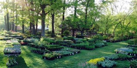 wedding venues with gardens in nj rutgers gardens weddings get prices for wedding venues in nj