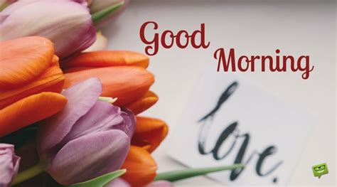 images of love with good morning love will save the day good morning my love